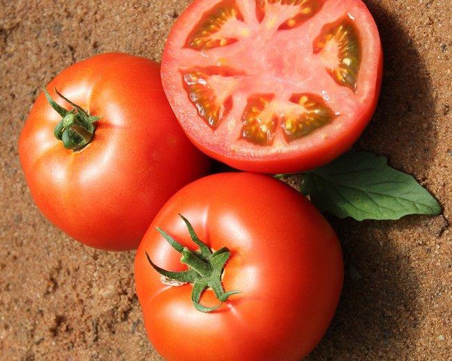 Обработка семян томатов перед посадкой на рассаду