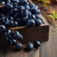 Болезни винограда и борьба с ними: фото