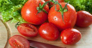 Как заготовить семена помидоров в домашних условиях