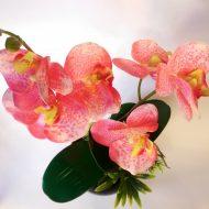 Как подкормить орхидею янтарной кислотой в таблетках?