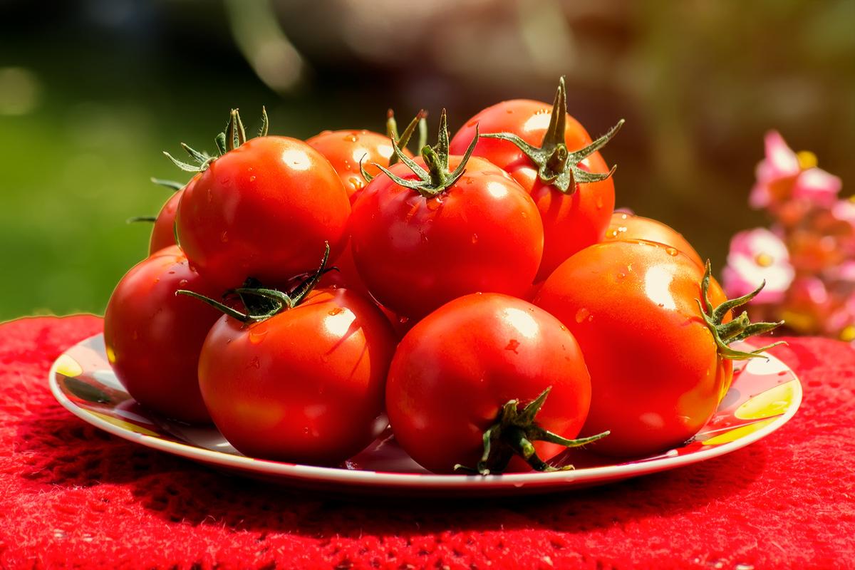 Лунный календарь посадки помидор в марте 2019 года