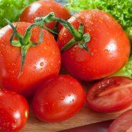 Когда сеять томаты на рассаду по лунному календарю в 2019 году?