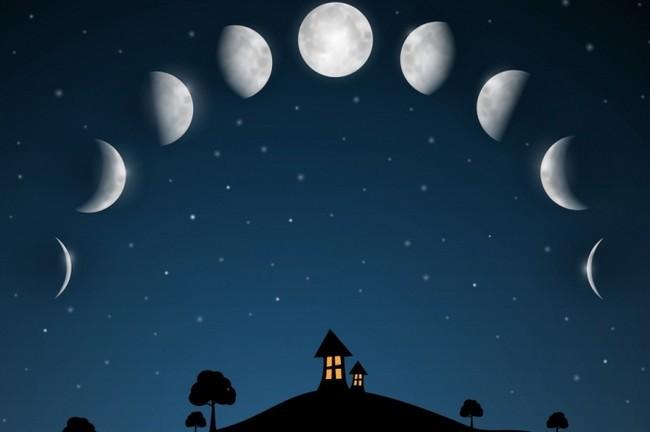 Лунный посадочный календарь на январь 2018 года благоприятные дни