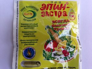 Как приготовить раствор эпина для замачивания семян