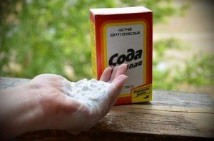 Сода для подкормки огурцов