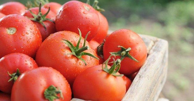 Когда пикировать помидоры в марте 2018