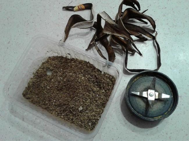 Удобрение из банановой кожуры для комнатных растений рецепт