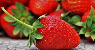 Грамотно подкормленные саженцы вовремя зацветут, принесут много вкусных ягод