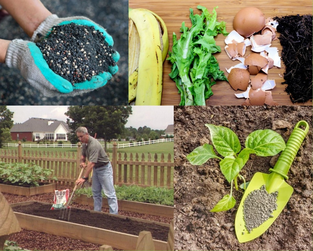 Разные виды удобрений