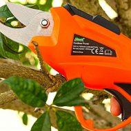 Особенности выбора электрического секатора для обрезки деревьев